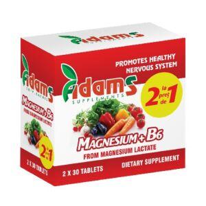 Pachet Magneziu+B6 30tab Adams Vision1+1