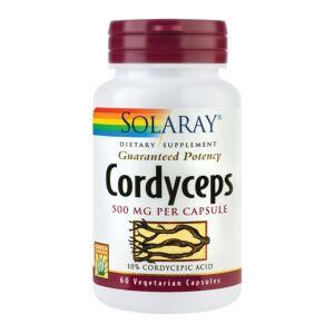 capsule de cordyceps