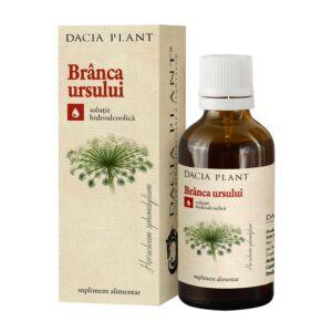 Branca Ursului tinctura 50ml Dacia Plant