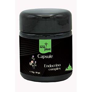 Capsule Endocrino Complex Eco30cps