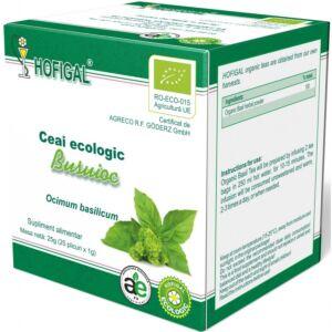 Ceai Ecologic Busuioc Hofigal