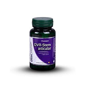 DVR-Stem Articular 60cps DVR Pharm