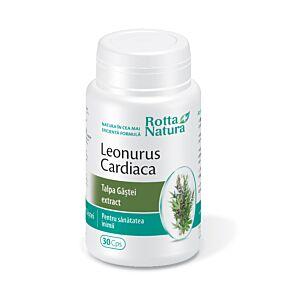 Leonurus Cardiaca forte 30cps Rotta Natura