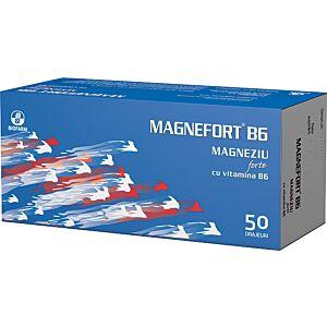 MAGNEFORT B6 50 dr Biofarm
