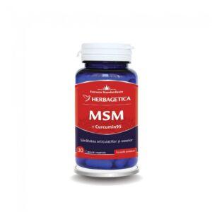 MSM+Curcumin95 ,30 Capsule-Herbagetica