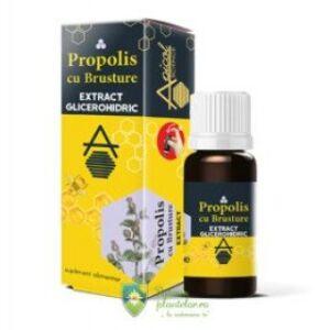 Propolis cu Brusture extract glicerohidric DVR Pharm