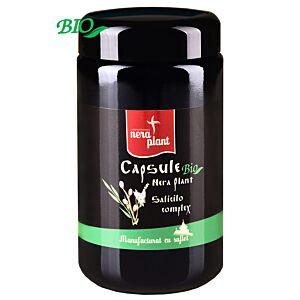 Salicilo Complex (Aspirina Vegetala) 270 capsule BIO - Nera Plant