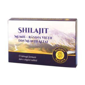 Shilajit Mumie – Rășina vieții din Munții Altai 60 tablete