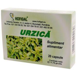 Urzica - 20 capsule Hofigal